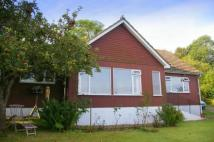 Bungalow for sale in Hayes Lane, Otterton...