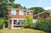 4 bedroom Detached house for sale in Hartley Wintney, Hook...