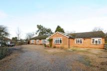 Finchampstead Bungalow for sale