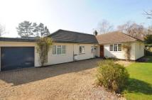 5 bed Bungalow in Hook, Hampshire