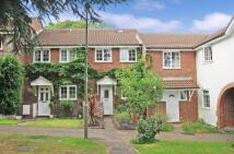 2 bedroom Terraced house in Lightwater, Surrey