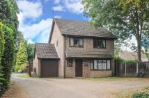 Detached property for sale in Windlesham, Surrey