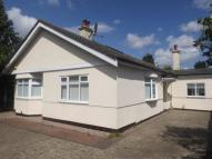 Bungalow for sale in Charminster Road...