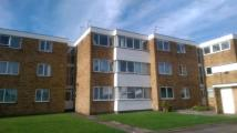 Grove Court Flat for sale
