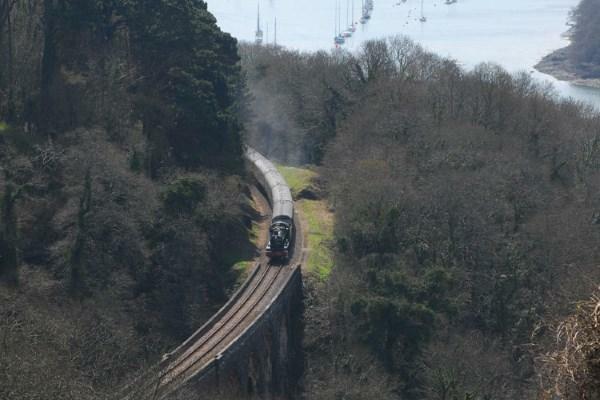 Steam Rail Line