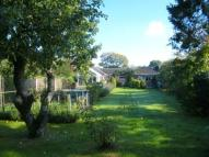 Bungalow for sale in The Avenue, West Moors...