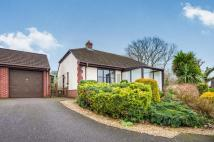 Bungalow for sale in Yonder Mount, Musbury...