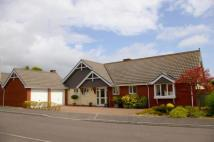 Bungalow for sale in Bulverton Park, Sidmouth...