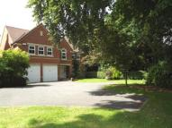 Detached house for sale in Pine Road, Hiltingbury...
