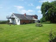Detached home for sale in Chaffcombe, Chard...