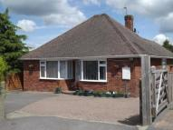 Bungalow in Helliers Road, Chard...