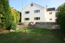 Detached house for sale in Crewkerne Road...