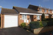 Bungalow for sale in Tarrant Close, Poole...