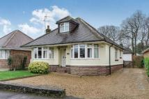 4 bed Bungalow for sale in Ashdene Road, Ashurst...