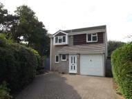 Chestnut Drive Detached house for sale