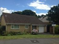 Tintagel Road Bungalow for sale