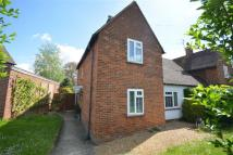 3 bedroom semi detached house to rent in Sele Road, Hertford...