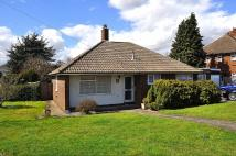 Detached Bungalow in Postwood Green...