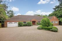 Detached property in Sheethanger Lane, Felden...