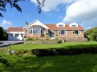 Detached Bungalow in Knox Park, Killinghall...