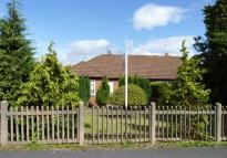 Lead Lane Bungalow to rent