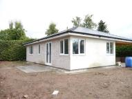 Rear of Greytree Lodge Detached Bungalow for sale