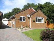 3 bed Detached Bungalow for sale in Meadowbank, Lydney