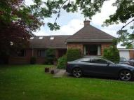 Detached Bungalow for sale in Edenwall Road, Coalway...