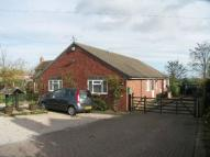 Detached Bungalow for sale in Elmley View Crossway...