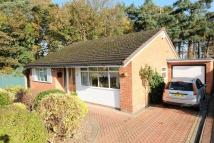 2 bed Detached Bungalow in Prince Rupert Road...