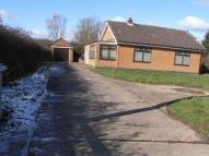 2 bed Bungalow to rent in Pinfold Lane...