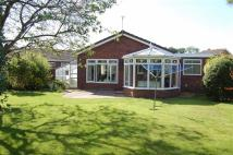 Detached Bungalow for sale in Primrose Drive...