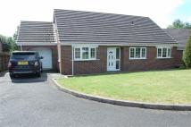 Detached Bungalow in Cae Perthi, Arddleen...