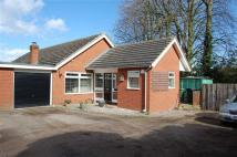 Wellbury Close Detached Bungalow for sale