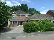Doctors Meadow Detached house for sale