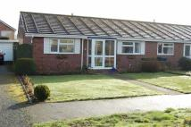 Semi-Detached Bungalow for sale in Salcombe Drive...