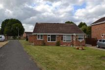 Semi-Detached Bungalow to rent in Lythwood Road...