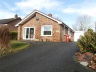 Bungalow for sale in Llandre, Bow Street...