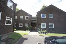Flat to rent in Beech Lodge, Roe Green...
