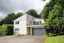 Detached property for sale in The Spinney...