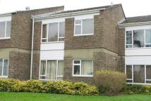 1 bed Ground Flat to rent in North Kingston