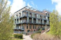 2 bed Apartment to rent in Campbell Park...