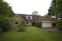 Detached house in Main Road, Hadlow Down...