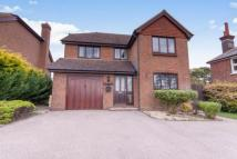 4 bedroom Detached house in Punnetts Town...
