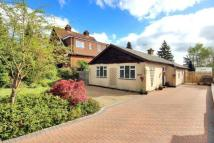 Bungalow for sale in Henwood Green Road...