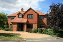 5 bed house to rent in Kinghorn Park, Maidenhead