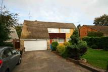 3 bedroom property to rent in Court Road, Maidenhead