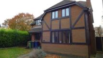 property to rent in Berndene Rise, Princes Risborough, HP27