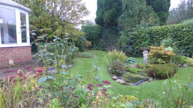 Littlemore Garden 047
