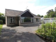 Detached Bungalow to rent in Great Elm, Frome